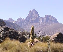 Mount Kenya Climbing, Kenya! Climbing Mt. Kenya with Mount Kenya Climbing Expeditions offering cheap tours and packages on all routes